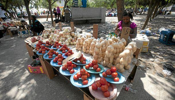 rise in informal businesses defies recession